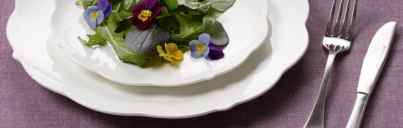 White Rose – Purer Landhaus-Charme